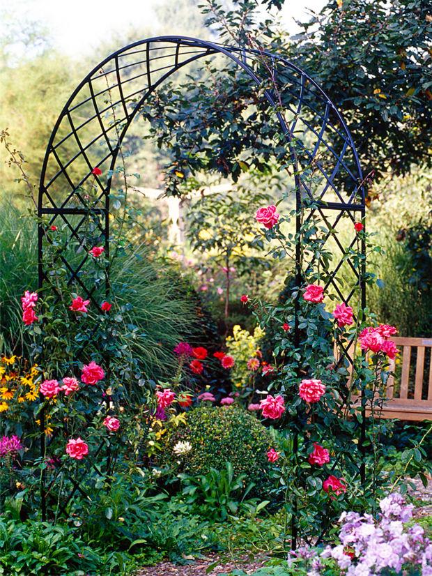 Tipps f r den rosengarten zuhausewohnen for Gartengestaltung rosen