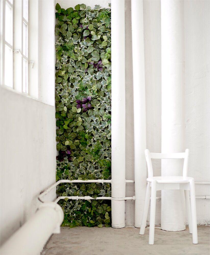 gr npflanzen im zimmer so werden sie in szene gesetzt zuhausewohnen. Black Bedroom Furniture Sets. Home Design Ideas
