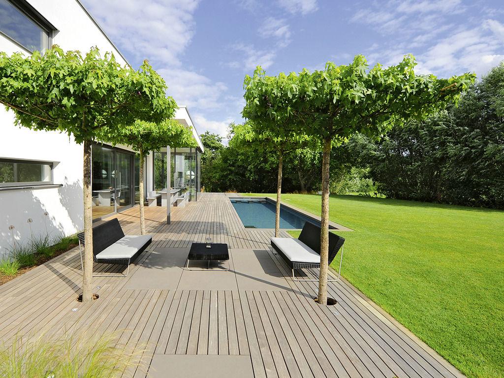 Eine Terrasse aus Holz, ein blauer Pool, und Bäume, die als Sonnenschirm dienen