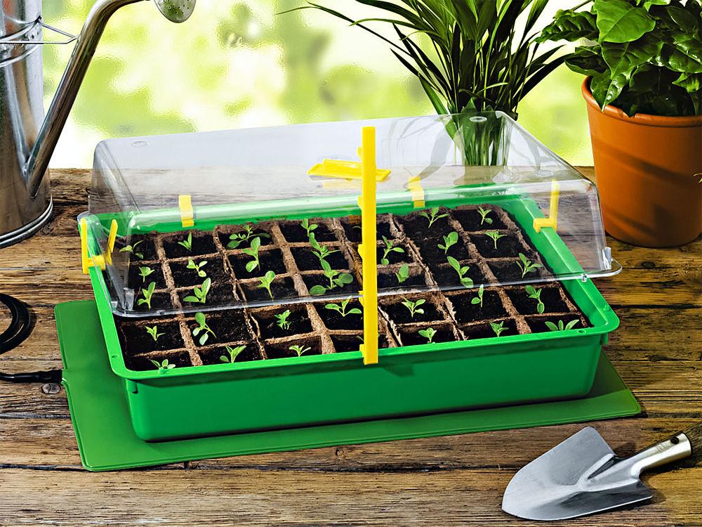 gemüse selber pflanzen! | zuhause wohnen, Garten und Bauen