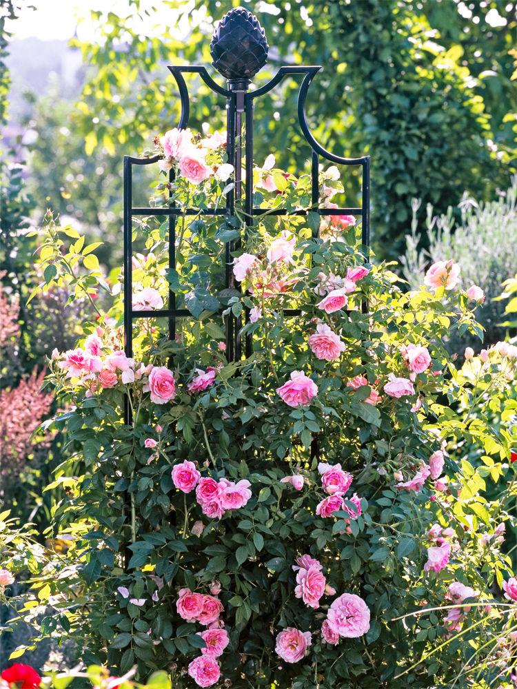 Rosenobelisk von Classic Garden Elements