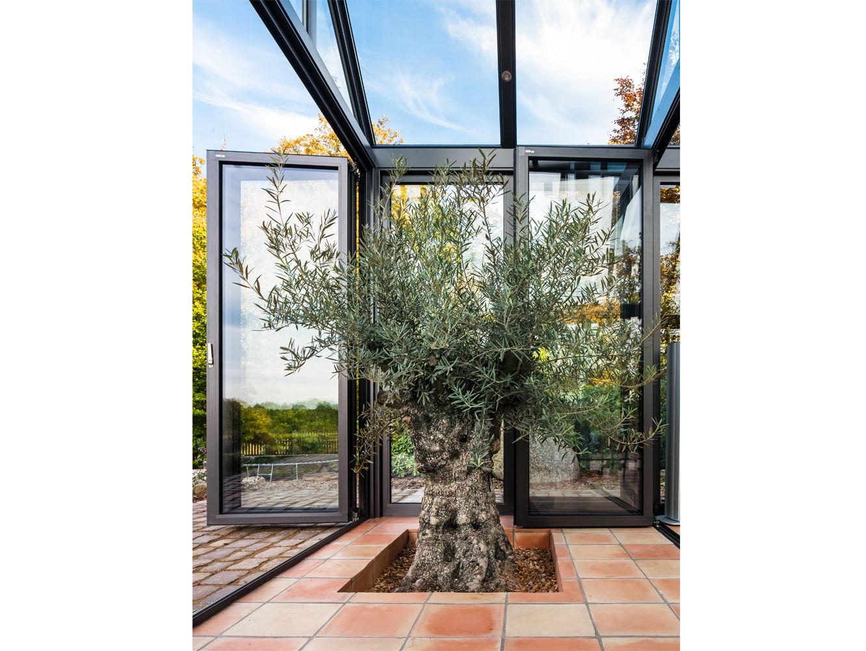 Anbau aus Glas | Zuhausewohnen